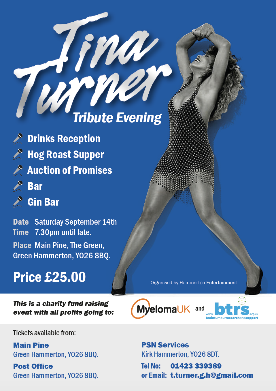 A Tina Turner Tribute